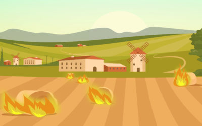 Bio-CNG: A Stubble Burning Alternative and Lifesaver Of Air